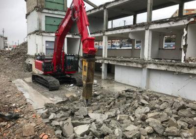 demolition-renensIMG_1995